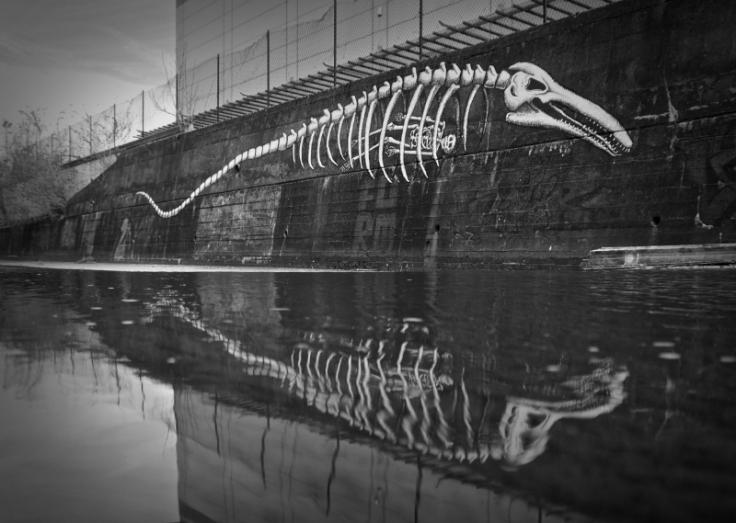 2. Fossils Phlegm.  Sheffield April 2013
