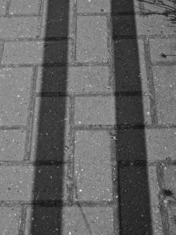 3 Shadow B&W