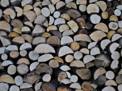 Wood 7