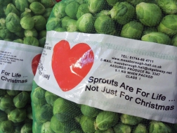 1. Sprouts