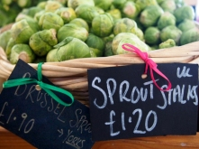5. Sprouts