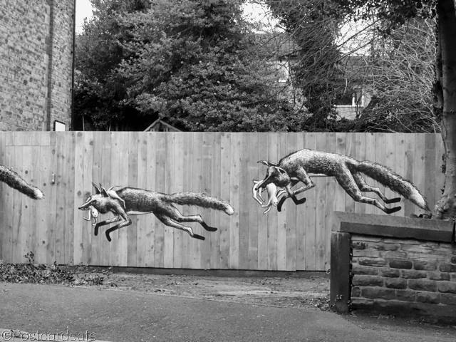 2. Urban Foxes - Phlegm - Sheffield 2013