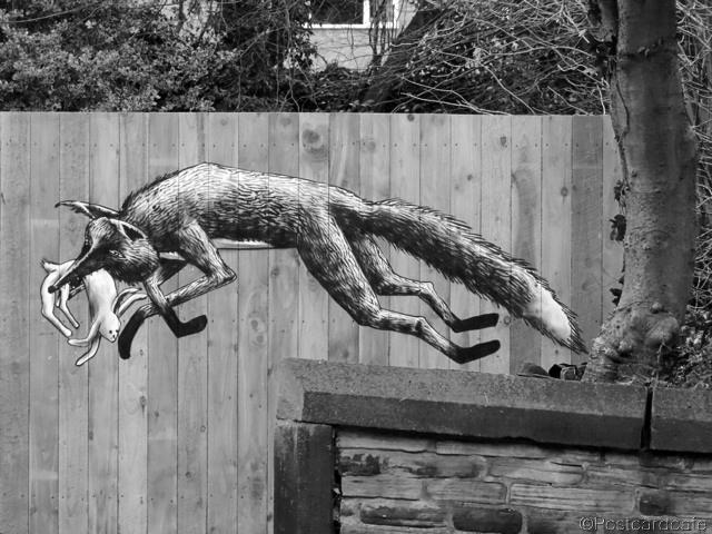 1. Urban Foxes - Phlegm - Sheffield 2013