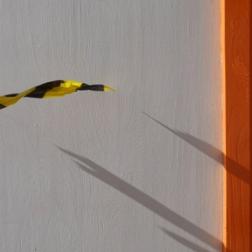 8. Yellow