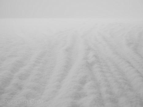 5. Snowfall - Sheffield - January 21 2015