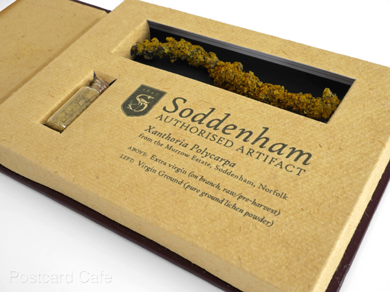 5. Soddenham - Limited Edition Authorised Artifact
