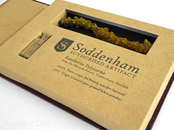 5. Soddenham - Limited Edition Authorised Artifact