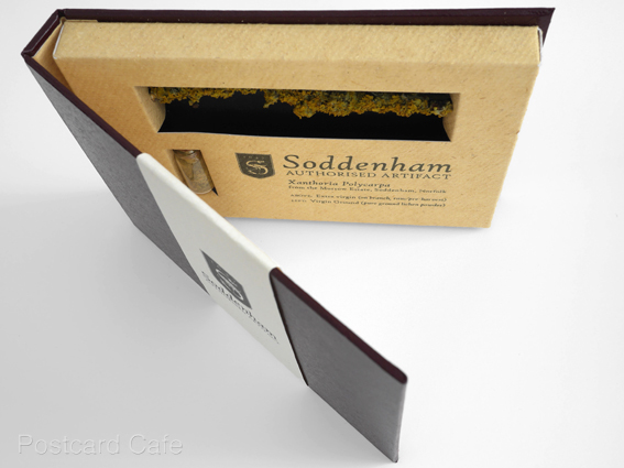 4. Soddenham - Limited Edition Authorised Artifact