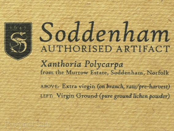 6. Soddenham - Limited Edition Authorised Artifact