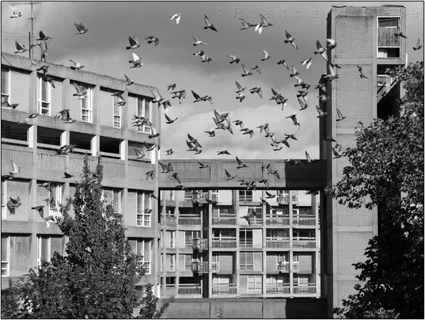 Park Hill Sheffield |  21 September 2016 | © Postcard Cafe