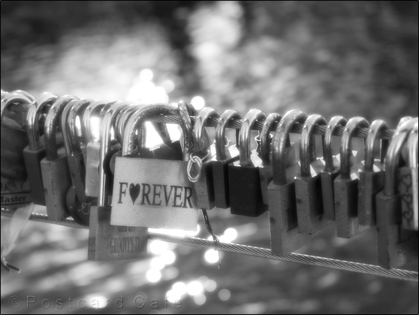 Forever | Time For You | Weir Bridge Bakewell 2016 | © Postcard Cafe  (sp1010005e)
