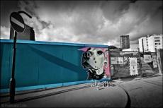 2. 2010 – 2020 Retrospective | Street Art Vol. 2| Guard Dog by coLor Sheffield December 2012