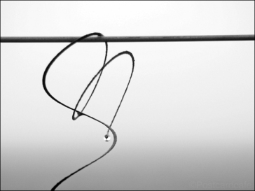 4. 2010 – 2020 Retrospective | In Mono | Water droplet formed by mist on wire fence | April 2014
