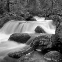3. 2010 – 2020 Retrospective | Nature Vol. 2 | Wyming Brook Sheffield January 2016